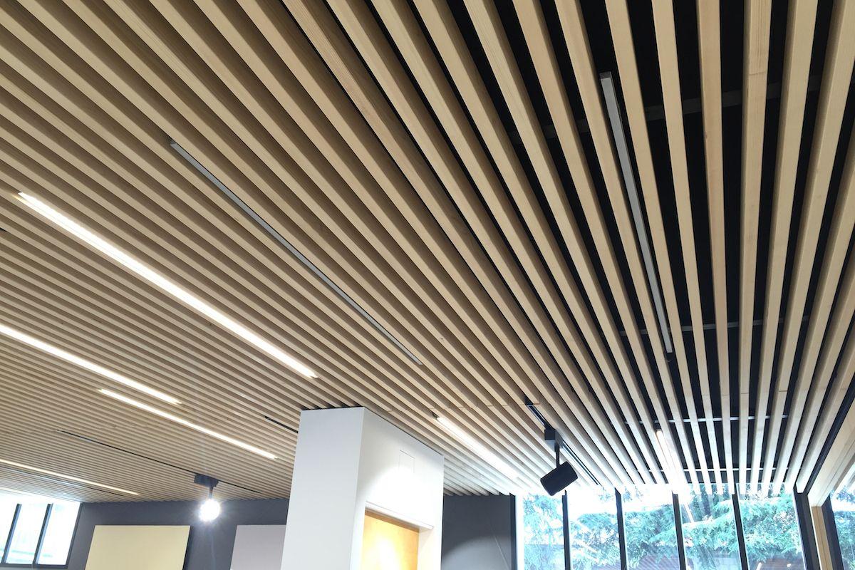 Ard Raccanello - ceiling detail - Padova